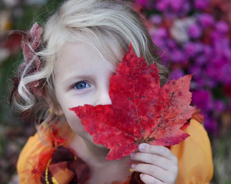 child care rebate benefit