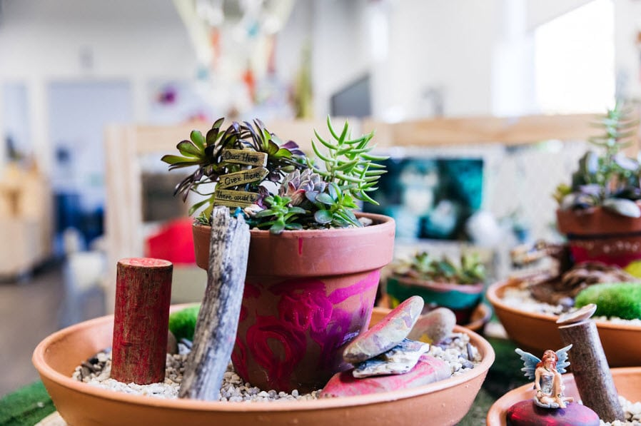 Succulent Fairy Garden an example of sustainable practices through play-based learning