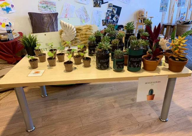 What is a passion project? An example of the succulents on sale at Petit Early Learning Journey Burleigh community markets